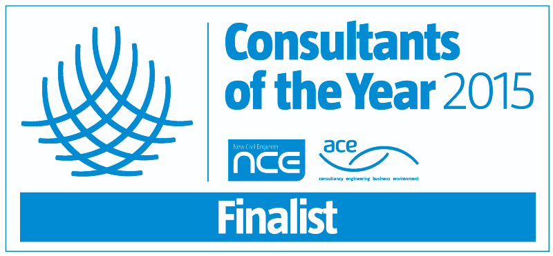 NCE/ACE Consultants of the Year 2015 Finalist
